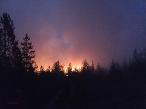 Det er fjerde gang i sommer at det har vært skogbrann i området sør for Sveg. Selv når det ser dødt ut er det fare for at brannen blusser opp igjen.