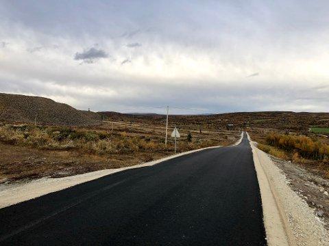 NY VEI: Den nye veien til Olavsgruva er åpnet.