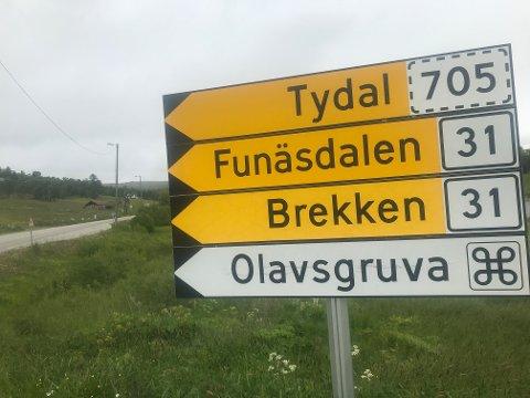 Fylkesveg 31, Røros-Brekken
