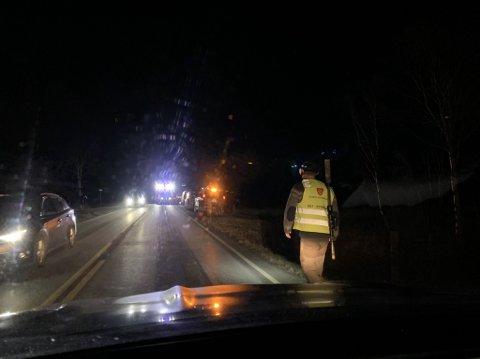 Fredag kveld ble det påkjørt en elg på fv. 30 nord for Røros.