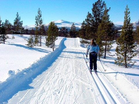 LITE SNØ: Det er fullt mulig å gå på ski i fjellregionen selv om forholdene ikke er så tiltalende som på dette bildet.