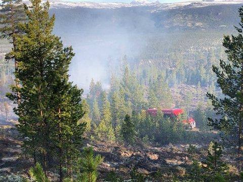 Brannmannskaper jobber med å få slukket skogbrannen i Grimsbu.