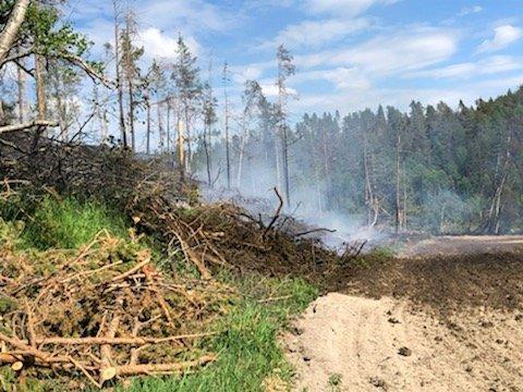 Skogbrann i Erlia på Tolga mandag ettermiddag.