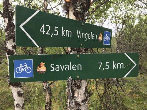 SETERVEIEN: Den 160 kilometer lange seterveien mellom Røros og Alvdal får 190.000 kroner i støtte fra Innovasjon Norge. - Pengene skal brukes til å teste ut produktpakker, sier Roar Aksdal, daglig leder i Seterveien AS. Foto: Privat