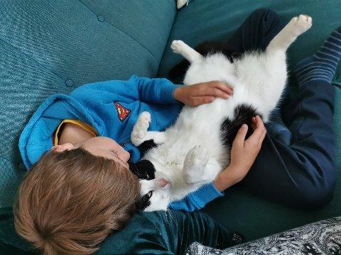 FRIEREN I FANGET: Edin (7) er lykkelig gjenforent med katten Hermann som har vært på oppdagelsesferd i Folldal.