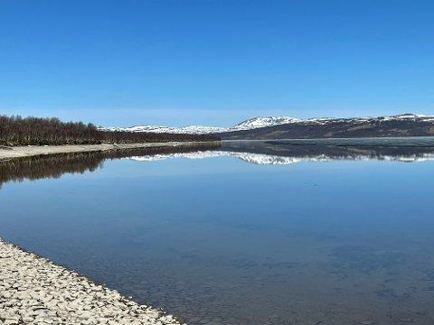 Speilblankt: Storskarven speiler seg i Aursunden.