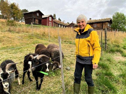 DRIVKRAFT: - Det er interessen for dyra, arbeidet med jorda og ressursene på gården som motiverer meg, forteller Anita Stølan. Hun er en av drivkreftene bak REKO-ringen på Tynset.