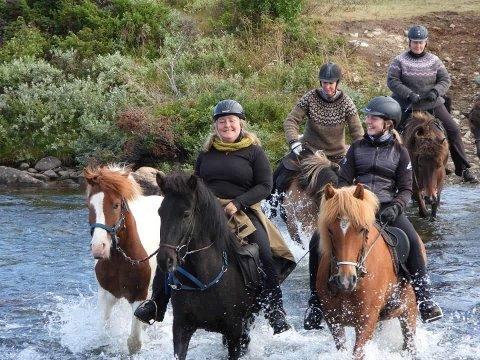 FAMILIEBEDRIFT: Anne Margrethe Sæterhaug (45) med tospannet hun rir gjennom hele sommeren, Lodi (11) t.v og Sigga (14). Datteren Maren (18) har vokst opp på hesteryggen og går for tiden på Tynset VGS.