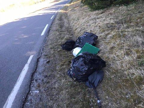 Søppel slengt i veikanten på Rustad.