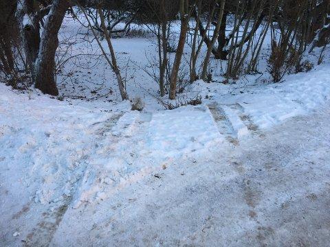 ENDTE HER: En bil endte i grøften i Gamle Drammensvei i Asker mandag ettermiddag. Ingen personer kom til skade.