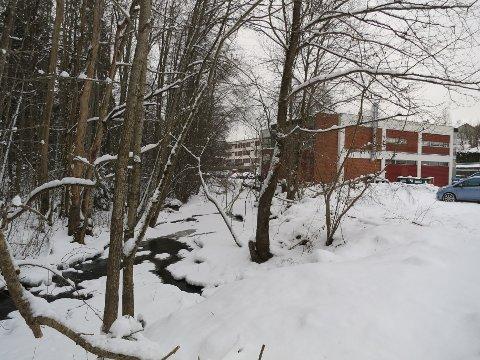 ELVEVERN: Naturverne er bekymret for fremtiden til Askerelva, som her renner delvis under is.