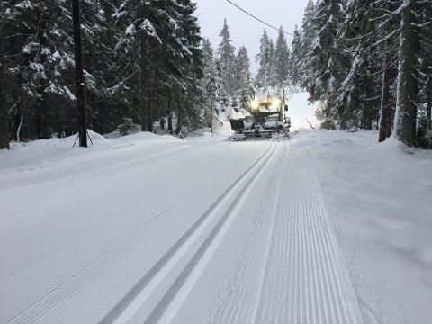 DRØMMEFORHOLD: Det ventes mer snø torsdag, men fra fredag blir det kaldere, og alt ligger dermed til rette for perfekte skiforehold til helgen. Dette bildet er tatt onsdag i Vestmarka.
