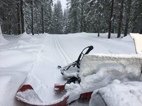 SKAL FYLLES OPP: Skiforeningen venter at mange vil gå på ski i marka til helgen, og ber folk tenke over hvor og når de går for å ikke lage altfor mye kaos på p-plassene.