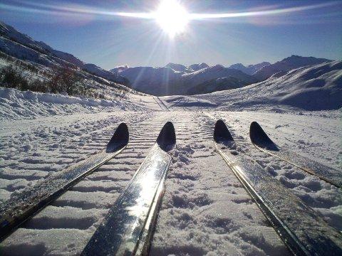 Vintereventyr: (Foto: Petter Åsholt)