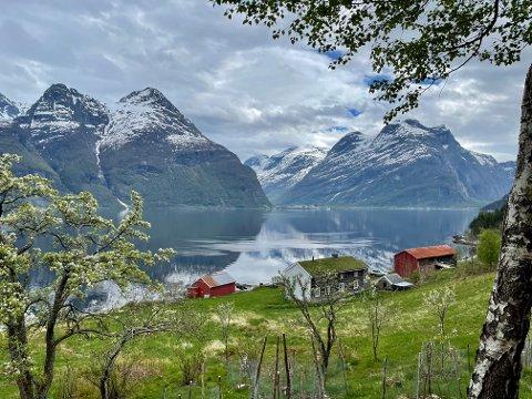 Fjord og fjell. Foto: Ole Ragnar Ekren