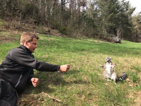 Terje Jensen sammen med en hjemvendt lemur lørdag ettermiddag. Fire av de fem lemurene er kommet til rette, melder eierne av Den lille dyrehage.