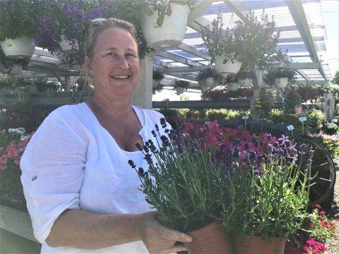 Cathrine Henriksen vet råd til deg som leter etter en plante som tåler å stå på kirkegården, uten å bli spist opp av brunsnegler.