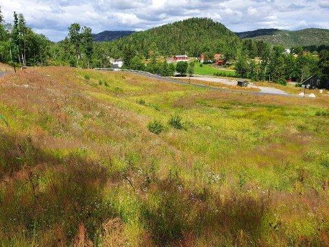 I Enghola holder kommunen nå på å bygge en kommunal bolig. Ingen av de andre tomtene er solgt, så derfor foreslår kommunedirektøren å gi 100.000 kroner avslag på tomtene, i tillegg til 50% avslag til de to første som kjøper.