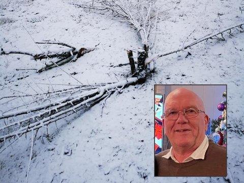 Jarle Greva på Søndeled har politianmeldt de som vandaliserte hagens hans natt til 1. nyttårsdag. Ifølge han er det tre menn som står bak den mystiske trefellinga som skjer rundt om i distriktet.