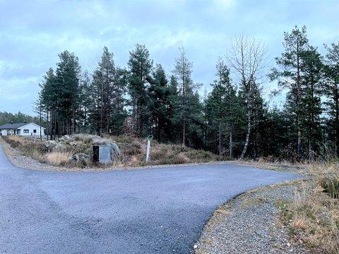 På Lindvollheia i Gjerstad er det nok av ledige boligtomter. Her reduseres kommunens tomter med 100.000 kroner.