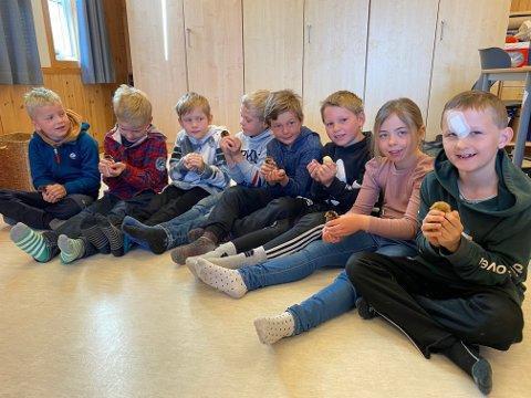 Kyllingene skal nå være en liten stund til i klasserommet, før de skal av gårde til sitt nye hjem.
