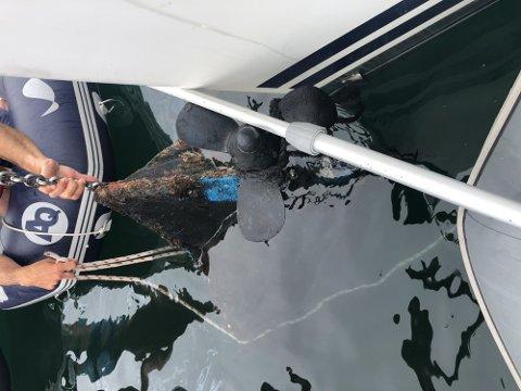 OPP MED ANKRET: I midten av juli fikk en seilbåt en tresjekte på ankeret. Risør kommune har nå undersøkt stedet.