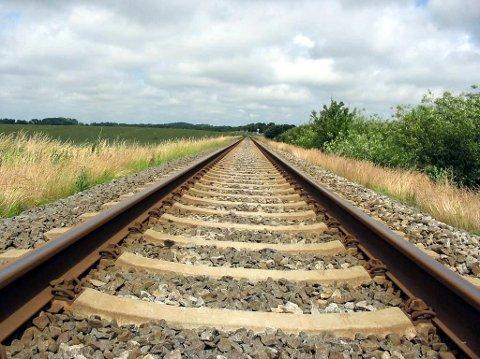 FORTVILER: Lokale bønder fortviler etter at beitedyr har blitt påkjørt på togskinnene grunnet mangel på vedlikehold av gjerdene.