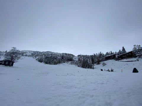 NYSNØ: Tirsdag morgen er bakken dekket av et hvitt teppe.