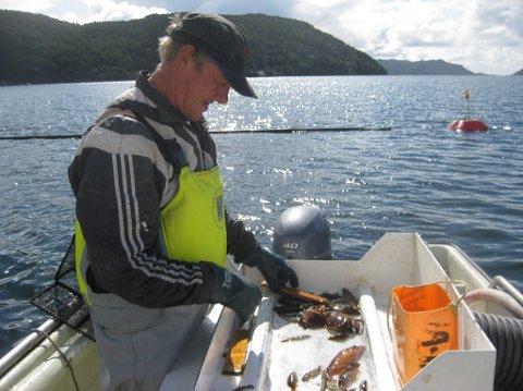 OVERVÅKES: – Det er bare leppefisk-båtene som skal overvåkes og dette er tull. Ingen andre fiskeslag blir så godt kontrollert som leppefisken, sier Thor Gunnar Olsen fra Abelnes, som har satset på leppefisket i ni år.