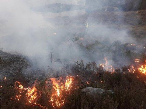 FORBUDT: Fra og med onsdag blir det forbudt med åpen ild i utmark i Lund kommune.