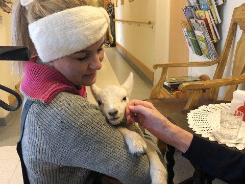 KOPPLAM: Linn Jensen Østhus jobber på omsorgssenteret, men holder også sauer. De hadde fått et kopplam som hun tok med til beboerne.