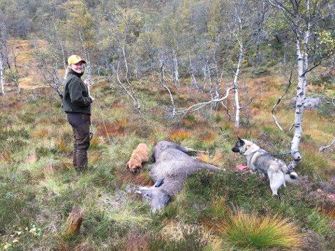HØSTLYKKE: Tinje Mydland sjekker et av ungdyrene.