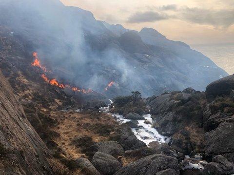 SKOGBRANN: Det brenner på Jøssingfjordheia.