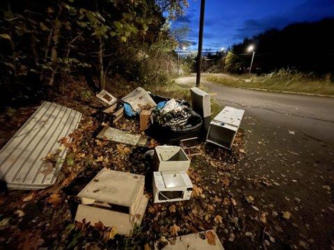 DUMPET: Et stort lass med husholdningsavfall er dumpet like ved Svartdalsveien. Sveip for flere bilder.