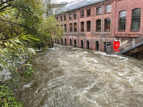 MYE VANN: Vannet sto høyt ved Mathallen og Vulkan søndag ettermiddag.