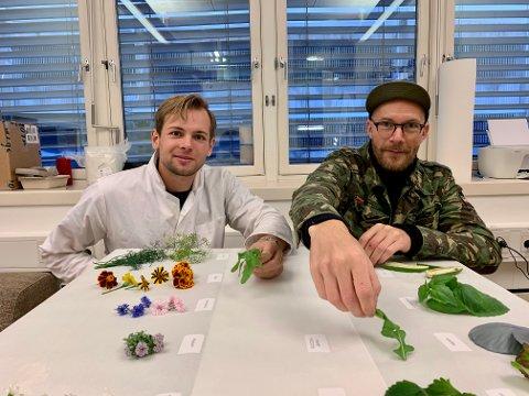 SJEKKER: Dagens høsteklare urter ligger utover bordet. Foran Ole-Mikal Fløgstad (t.v.) ligger spiselige blomster som krondill, tagetes, kornblomster og alyssum. Magnus Humle løfter litt på den nyutviklede verdensnyheten.