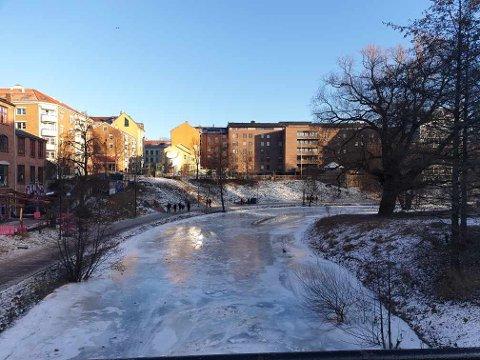 LIVSFARLIG LEK: Gjentatte ganger på kort tid har Linda Martinussen sett skolebarn leke på isen i Akerselva. Flere steder er det tynn is og store råker med vann som farer i full fart.