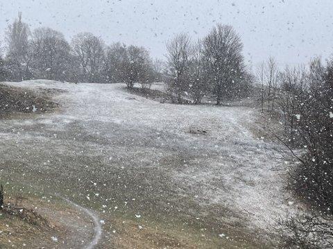 12. april snør det flere steder i Oslo. Her fra Carl Berner like før 09.00.