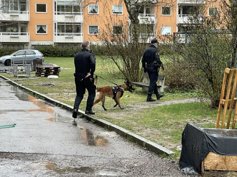 RYKKET UT: Politier i Emil Korsmos vei på Manglerud mandag etter de ble varslet masseslagsmål med jernstenger. Nå er tre personer pågrepet.