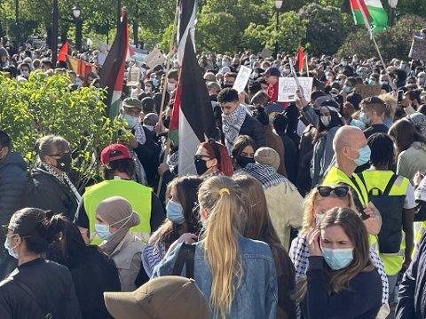DEMONSTRANTER: Flere hundre møtte opp til markeringen mot Israels angrep på Palestina.