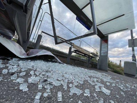 KNUST: Glasskår ligger strødd på bakken etter at busskuret på Brynseng ble knust tidlig fredag morgen.