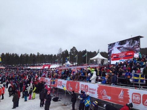 FOLKEFEST: Ski VM skapar folkefest i Falun.