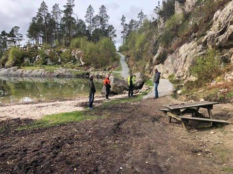 Ein av grunnene til at Bergen og Omland Friluftsråd held på med utbedring i Hatlejohansvika er at dei fekk ein førespurnad frå vellaget i området.