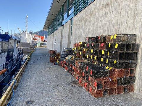 Beslag av 99 umerka krepseteiner i Hjeltefjorden. Foto: © Fiskeridirektoratet.