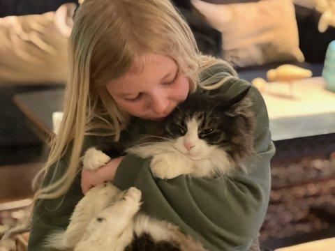 KLEPTOMAN: – Han jobber som regel om natten, og så ligger det på trappen om morgenen, forteller Eirin Haastø. På bildet ser vi Erle Haastø (9) sammen med katten Robin.