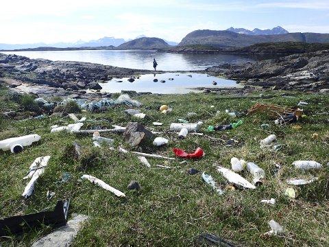 Søppel: Vi har plukket rekordmye søppel i år. Arkivfoto