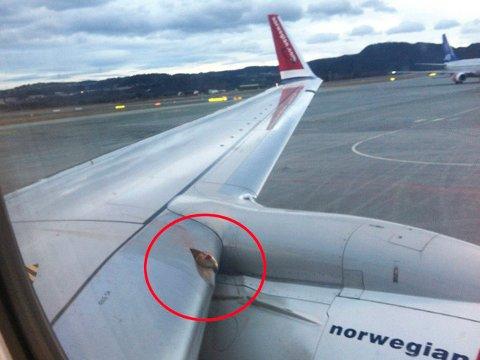 Et Norwegian-fly på vei fra Trondheim til Bergen måtte i 2014 snu etter at en svane traff flyvingen. Kollisjonen førte til skader på vingen.