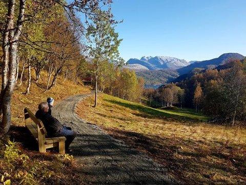 Det er satt opp benker langs den nye atkomstveien til husmannsplassen Kjelvik. Her kan man nyte utsikten og høstvakkert landskap. Foto: Nordlandsmuseet/ Ida Beate Otterlei.