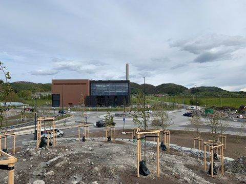 Vi starter på Stormyra. Mange planter er på plass, så etter hvert vil det bli grønt og fint også. Foto: Peter Fure, Statens vegvesen.