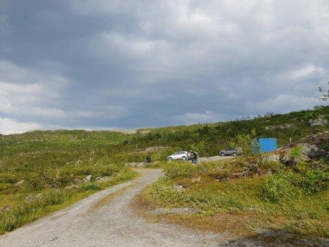 Hundetrening på Sundsfjordfjellet. Bilde tatt den 15.juli 2019.
